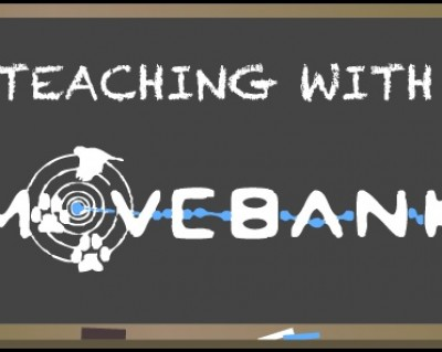 teaching with Movebank.org
