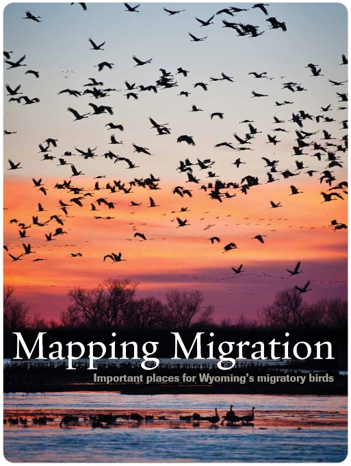Mapping Migration: important places for Wyoming's migratory birds (The Nature Conservancy)