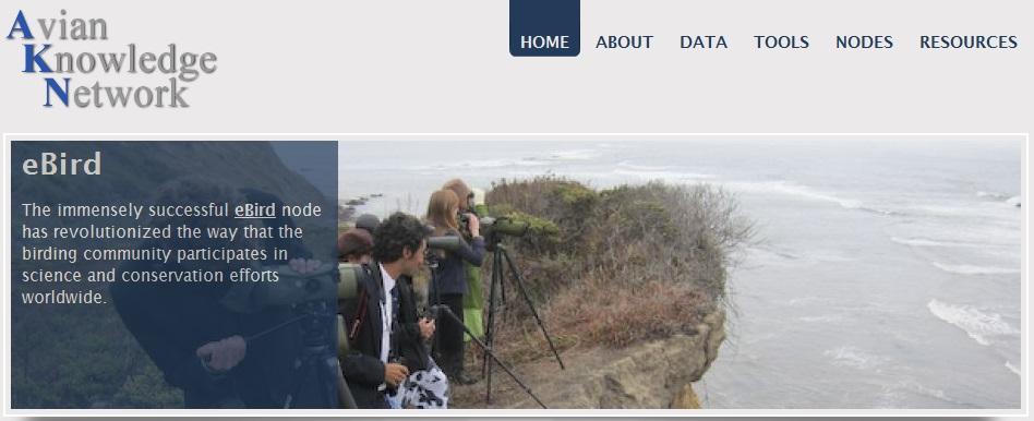 Avian Knowledge Network website