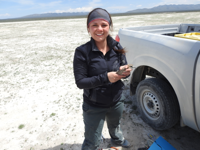 Alli Pierce getting ready to release the tagged bird back into the wild.Credit: Julio Merayo