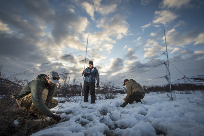 Setting up nets in the snow. Photo: Tim Romano