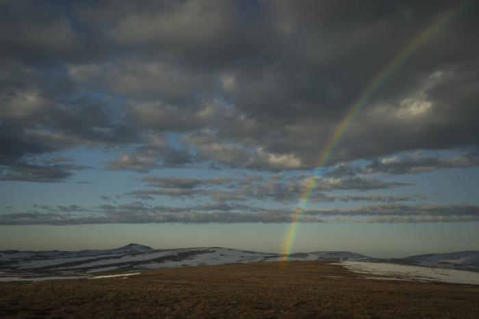 Study site in Nome, Alaska. Photo: Tim Romano